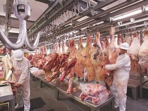 exportacion carne