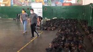 voluntarios bolsas listas
