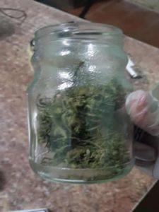 marihuana capitan castro2