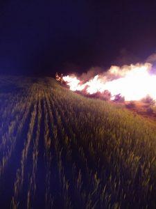 incendio campo