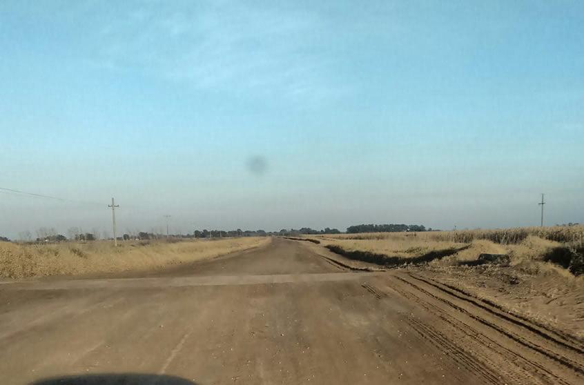 ruta cereal camino