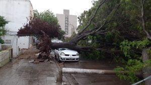 tormenta auto